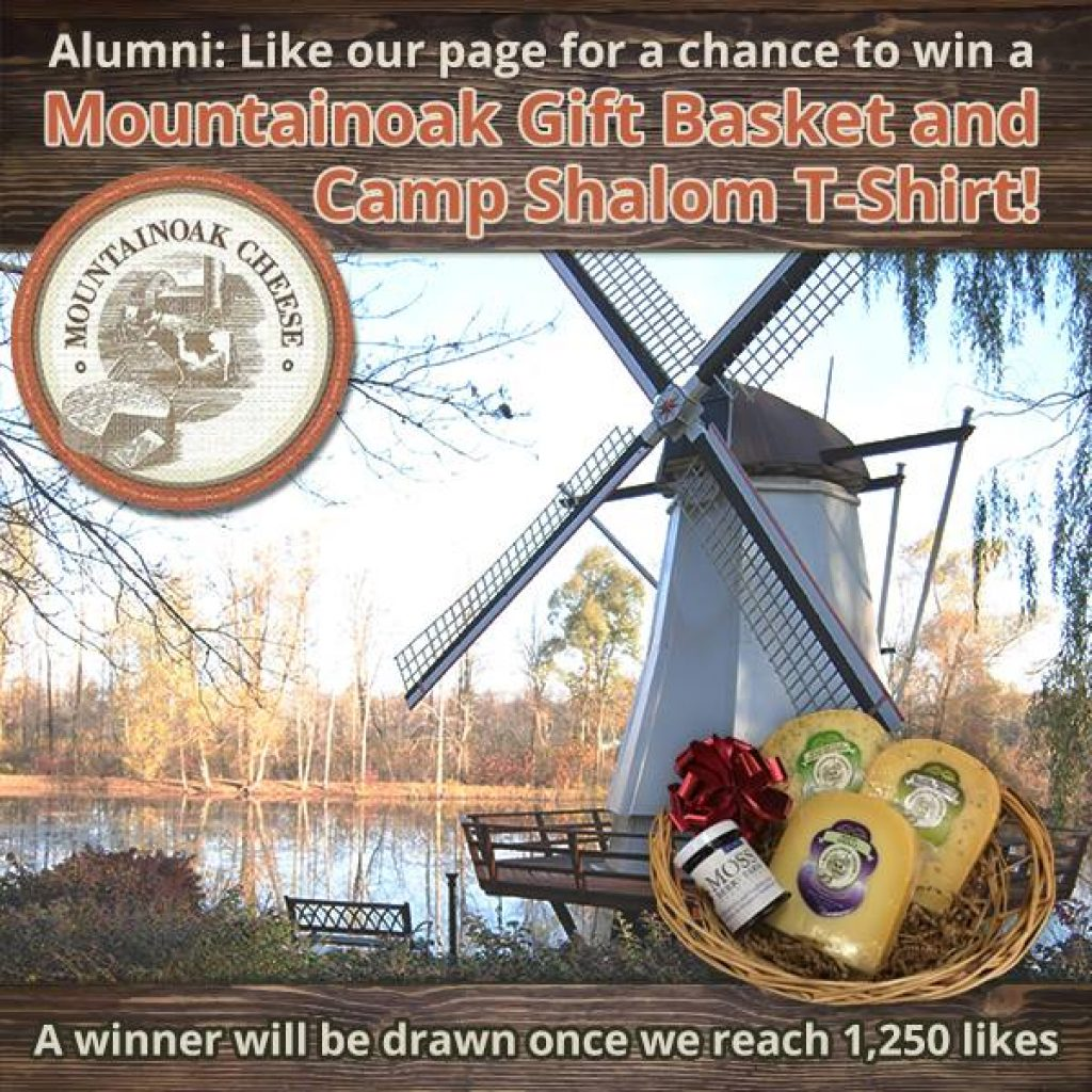 Enter Camp Shalom Alumni Contest